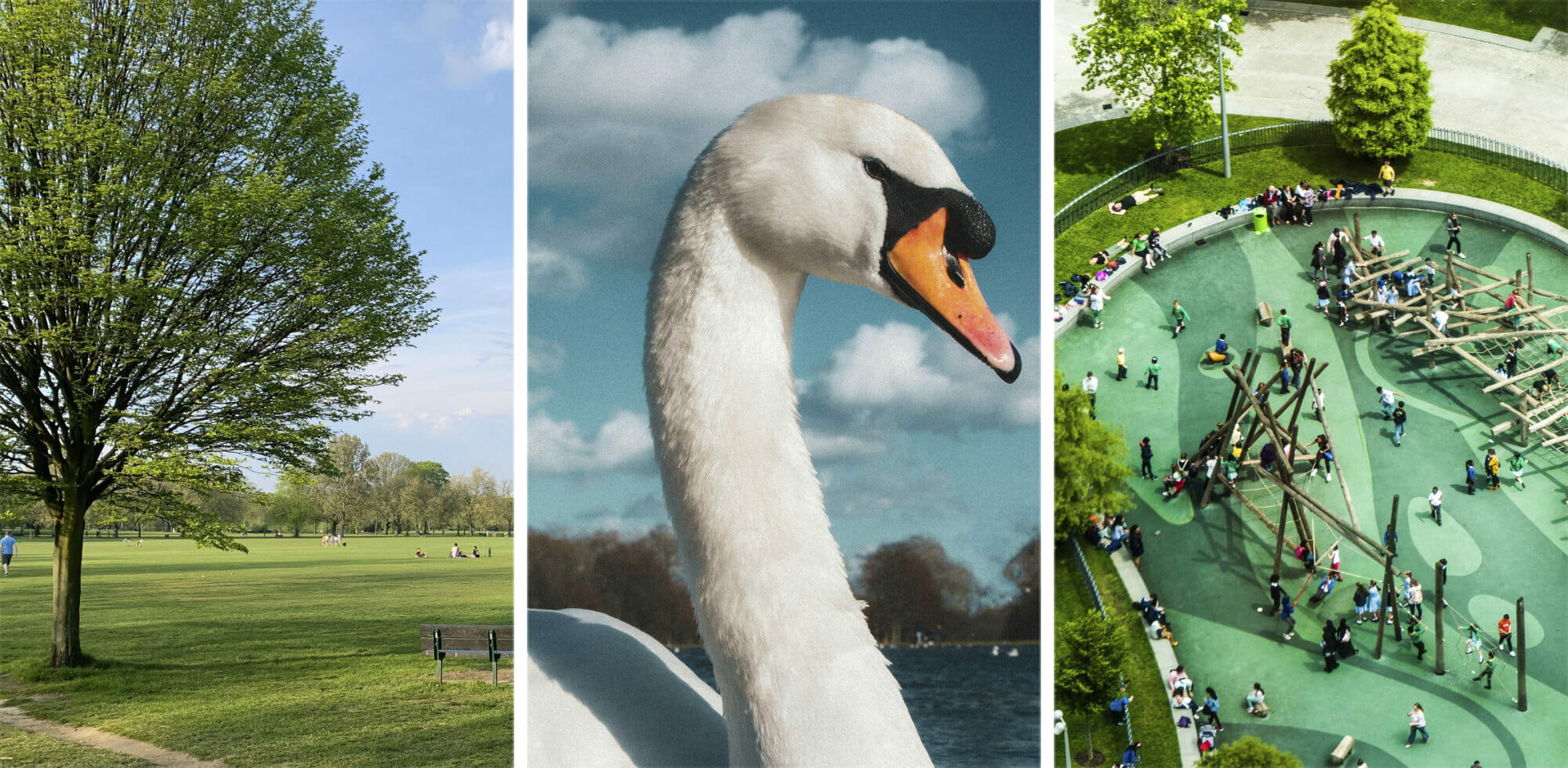 9+ Best Parks in London: a Visitor's Guide via @girlsgonelondon